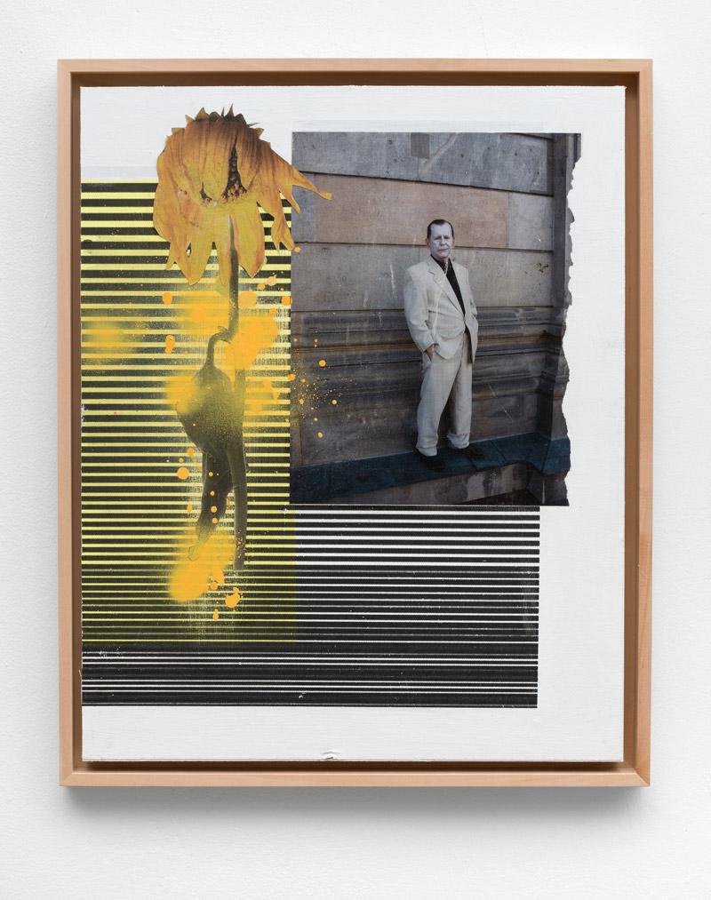 Natürliche-Mängel,-Andreas-Diefenbach,-2017,-54-×-40-cm,-Collage,-Siebdruck,-Lack-und-Acryl-auf-Holz